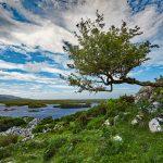 Connemara, County Galway_Web Size-2