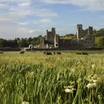 Fore Abbey, Co. Westmeath