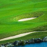 green-golf-course-field-PZ7EDY2
